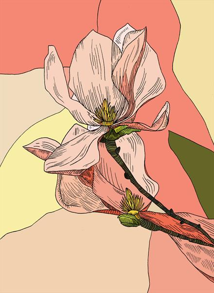 Magnolia Note Cards - 4 Pack by Natalie Bain