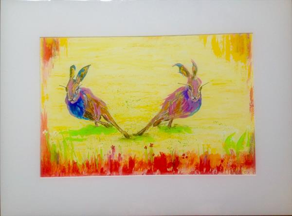 Hare the race begins! by Anushree Mish