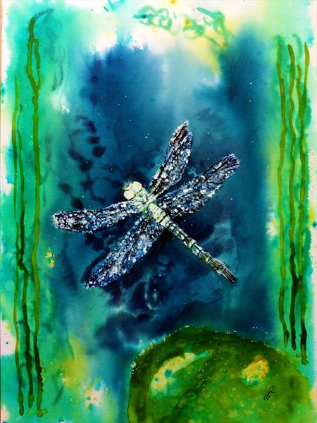 The Marvellous Dragonfly by Sue  Mobbs