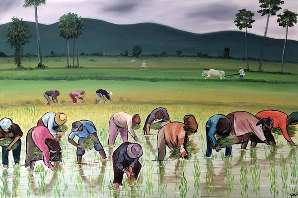 The Rice Planters by Aisha Haider