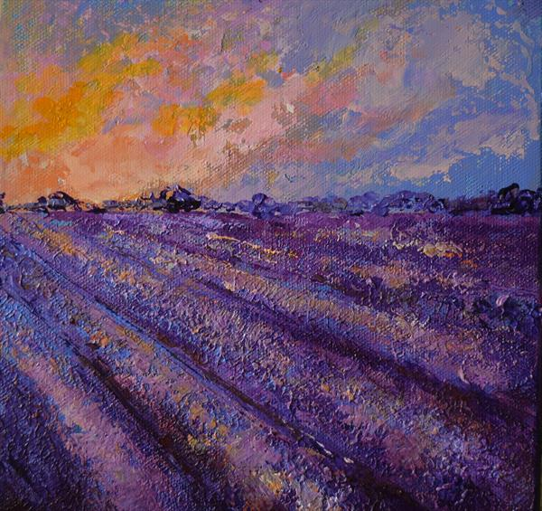 Lavender Field no1 by Colette Baumback