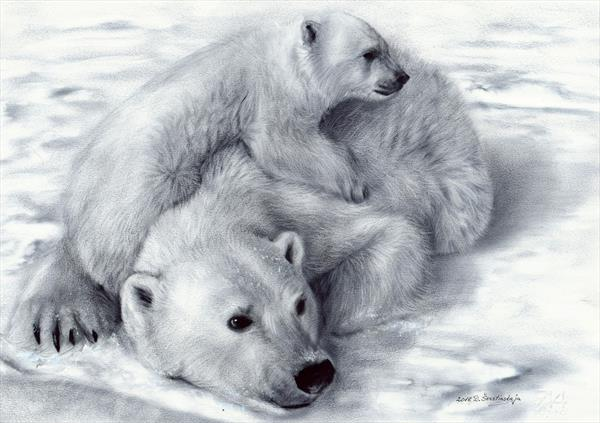 Polar Bears by Danguole Serstinskaja