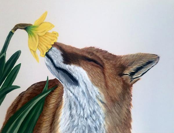 Fox and Daffodil (spring has sprung) by Jennie James