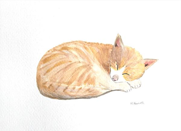Ginger pussy cat by Monika Howarth
