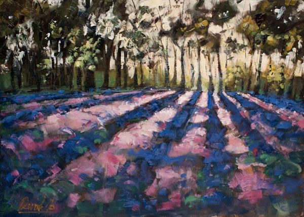 Purple Field and Evening Light Shining Through the Foliage by Michal Plevak
