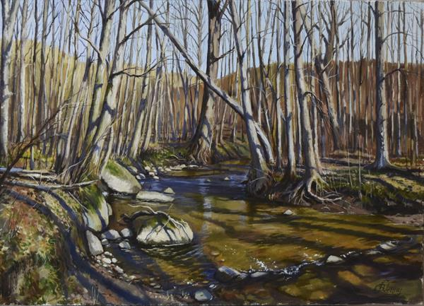 Forest river in early spring by Serghei Ghetiu