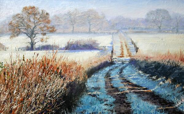 First Frost Reserved by David Barber