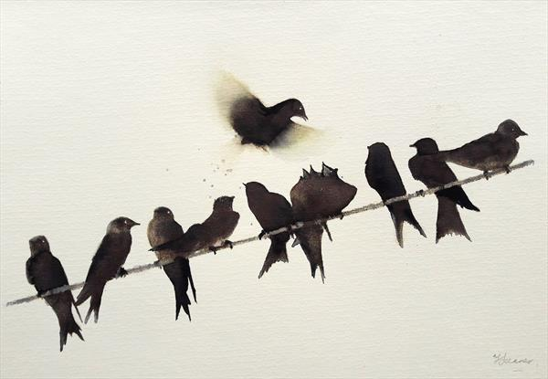 Swallows on a Wire by Teresa Tanner