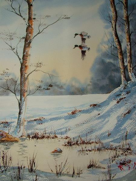 duck in winter by Ricky Figg