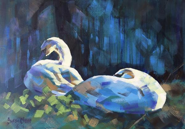 Pair of Swans by Susan Clare