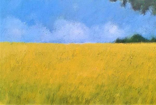 Rapeseed Fields, Hampshire IV by Jan Rippingham