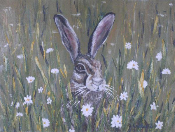 SPRING IN THE HARE