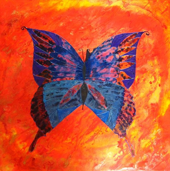 Vibrant butterfly - Currently showing at Malvern gallery by Fiona Robinson
