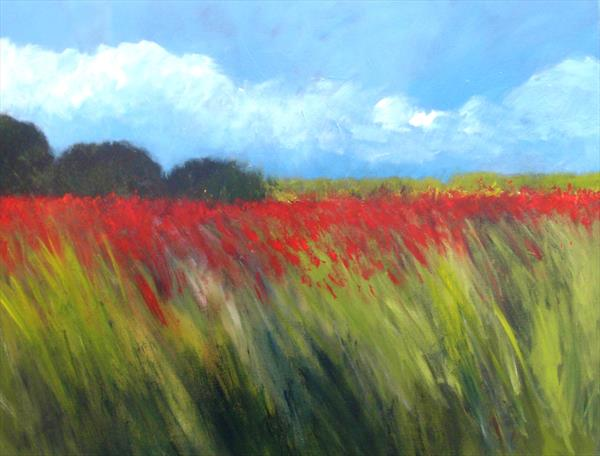 Field of Poppies 4