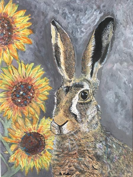 The Hare and the Sunflowers (series one) by Sarah  Matthews