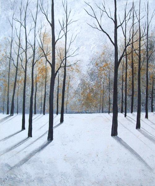 Shadows in the Snow by Patricia Richards