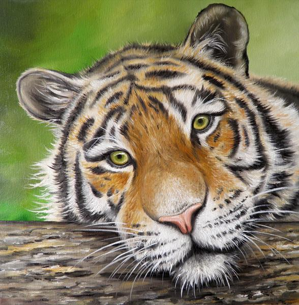 Tiger Face by Sarah Featherstone