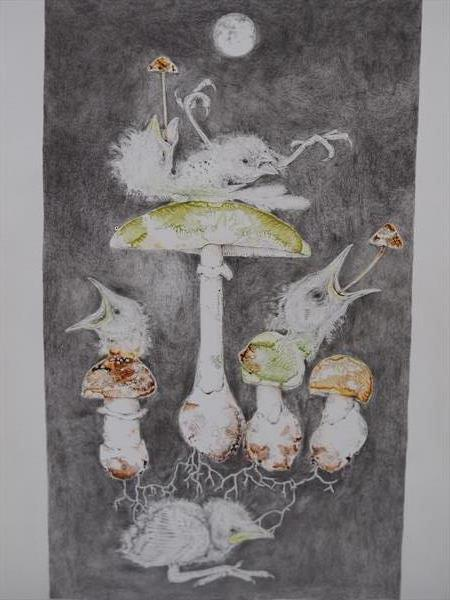 Death Cap Fungi by Andrew West