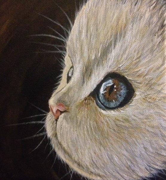 Pretty Kitty  by Jude Cottrell