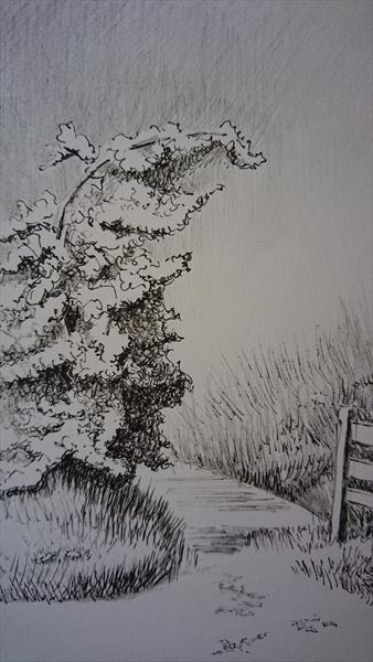 let's go walking it is sunny spring summer day pencil ink sketch paper by Elena Haines