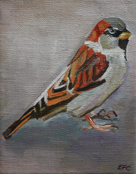 House Sparrow #1 by Emma Cownie