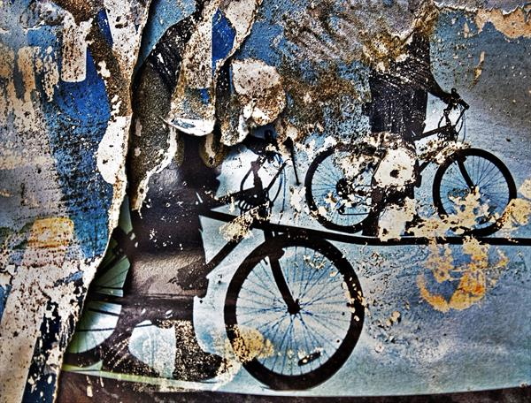 The Bicycle Diaries by Beata Podwysocka