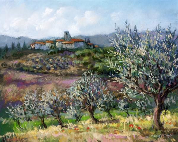 Olives at San Savino