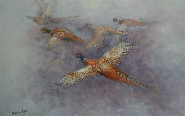 Flight of the Pheasants by Christopher Hughes