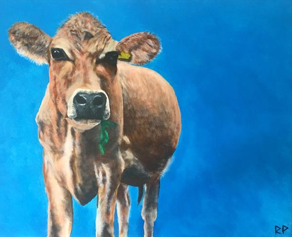 Jersey Moo by Rhys Powell
