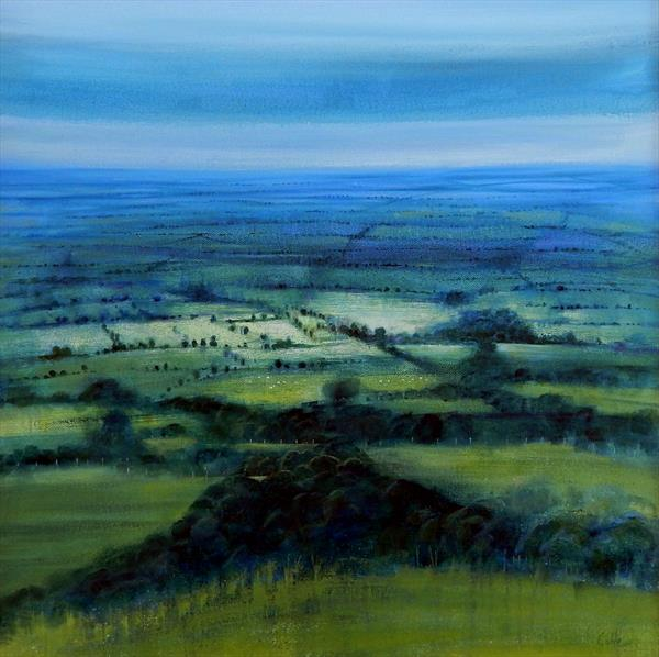 South Downs - Overcast by Denise Coble