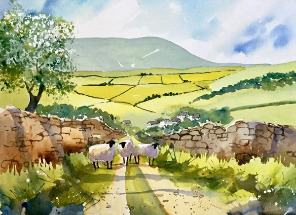 DOWN HAYS LANE TO PENDLE HILL by Susan Shaw