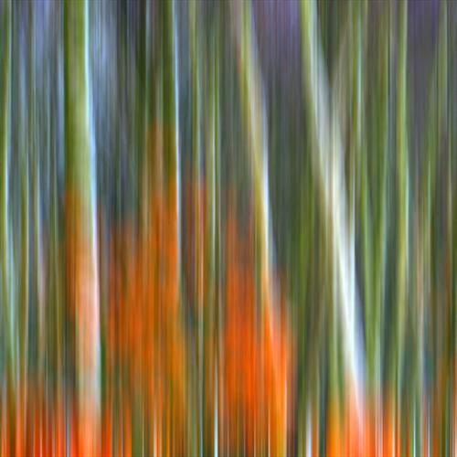 Time Reflects Everlasting Expressions #6 by David Henderson