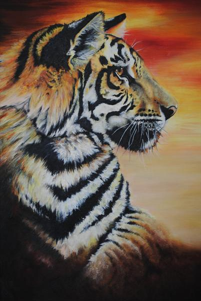 Tiger  by Amanda Coupland
