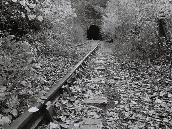 End of the Line: Tidenham Tunnel by Andrew Parker