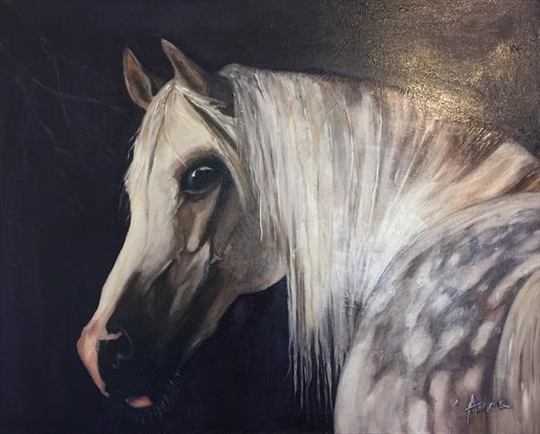 Beautiful Horse  by gbenga adeyi