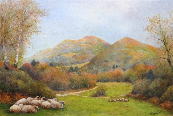 Sheep on the Malverns by Christopher Hughes