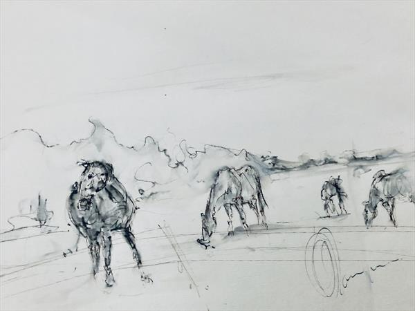 Horses in Gloucestershire  by Wendy Thompson