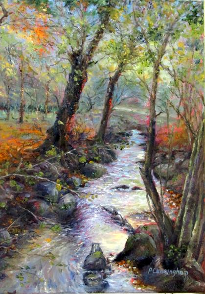 Stream near Gillan Creek by Patricia Cunningham