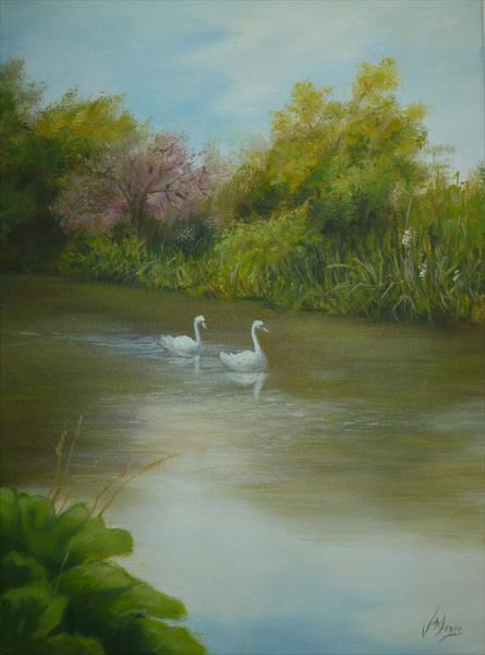 Swans on the Avon by Jane Moore
