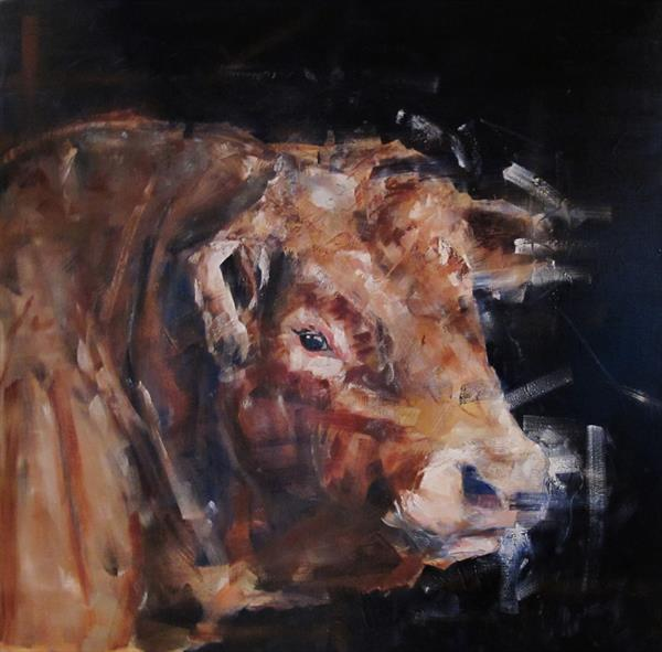 Limousin Bull   by Toby Frossell