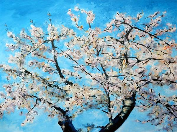 Fresh Cherry Blossom by Richard Freer