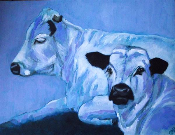 White park cattle by Gill Aitken