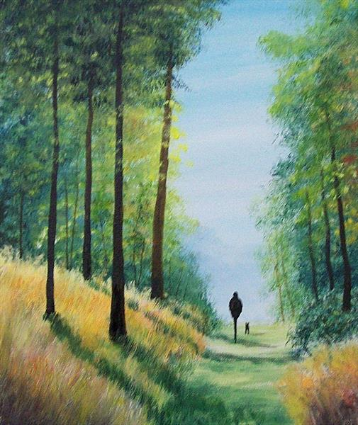 Sunlit Forest Walk by Patricia Richards
