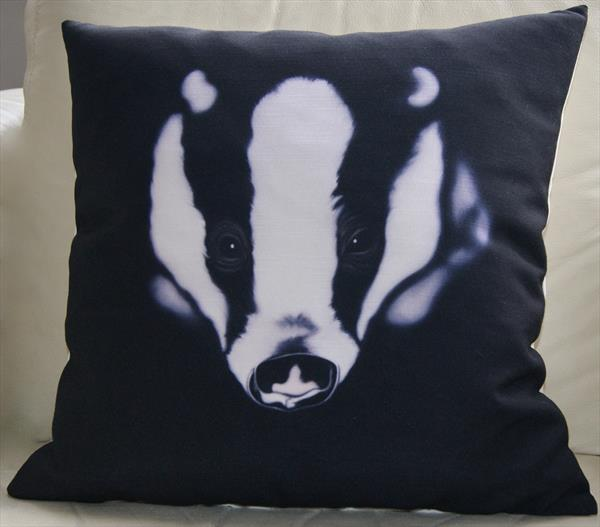 ' I'm Watching You' fine art cushion. by Steven Shaw