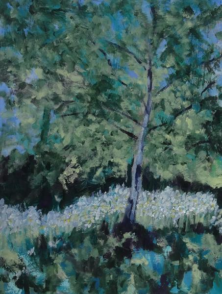 Silver Birch and Daisies