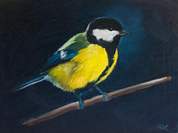 Great Tit 1 by John Crabb