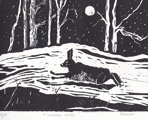 Winter Hare by Pat Knight