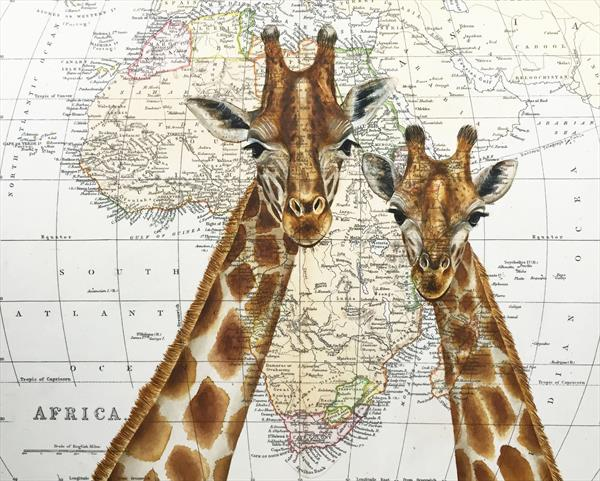 Romantic Giraffes on Antique African Map by jane Wilson