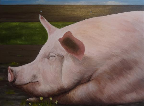 A Happy Pig by Roger Carrington