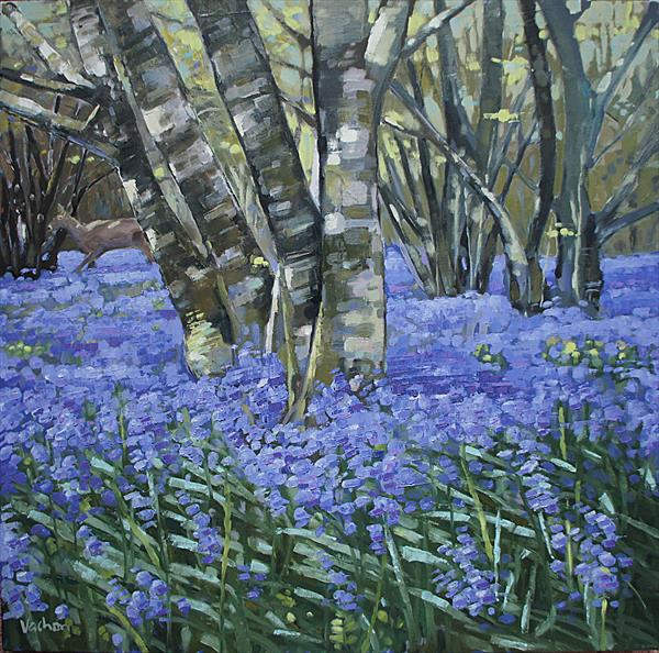 Bluebell Wood at Meldon by Paul Vachon